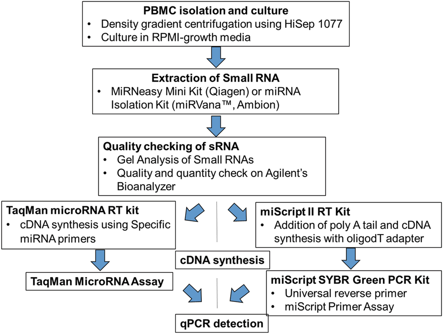 Extraction And Qpcr Based Detection Of Mirnas From Cultured Pbmcs Of Bubaline Origin Springerlink