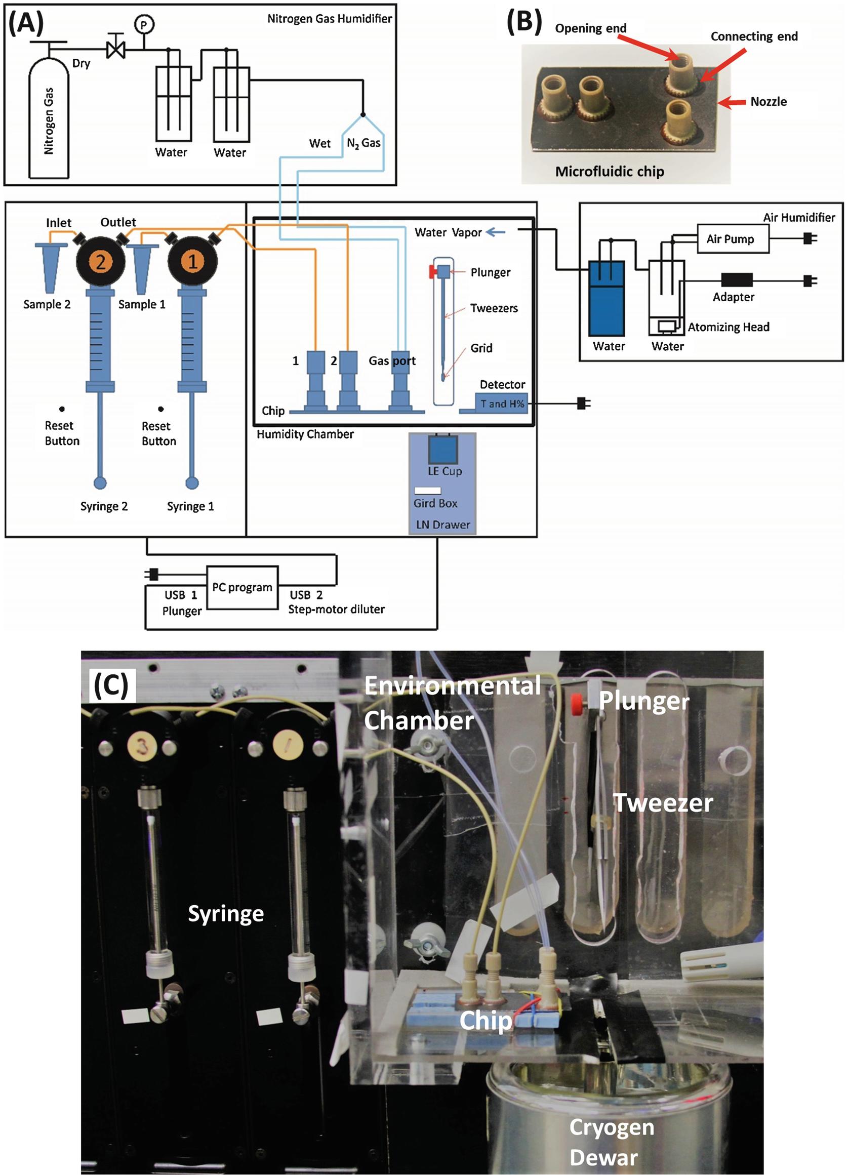 Time-Resolved Cryo-electron Microscopy Using a Microfluidic Chip ...