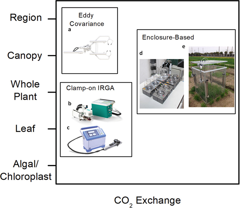 Survey Of Tools For Measuring In Vivo Photosynthesis Springerlink