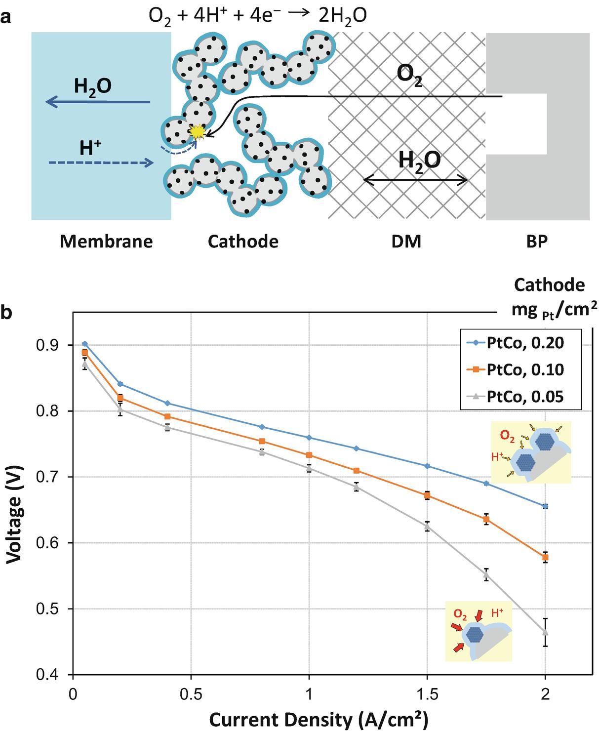 Proton-Exchange Membrane Fuel Cells with Low-Pt Content