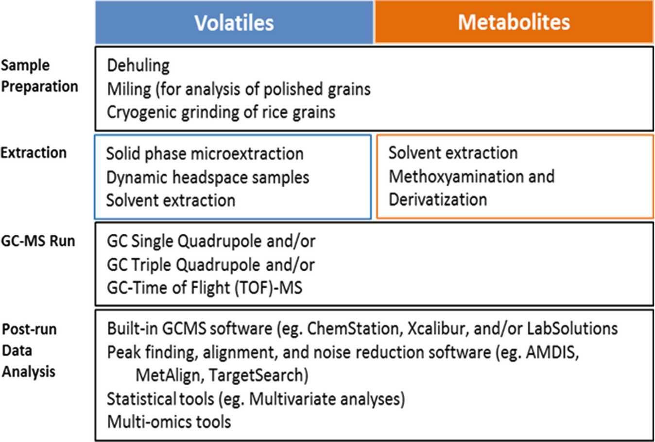 Rice Grain Quality Benchmarking Through Profiling of Volatiles and