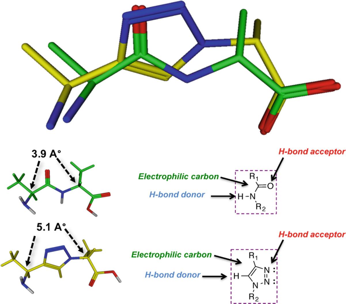 Bioconjugation in Drug Delivery: Practical Perspectives and