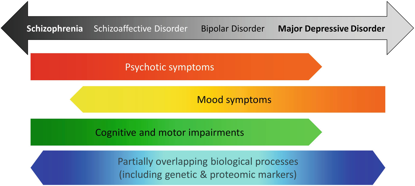Enhanced Molecular Appreciation of Psychiatric Disorders