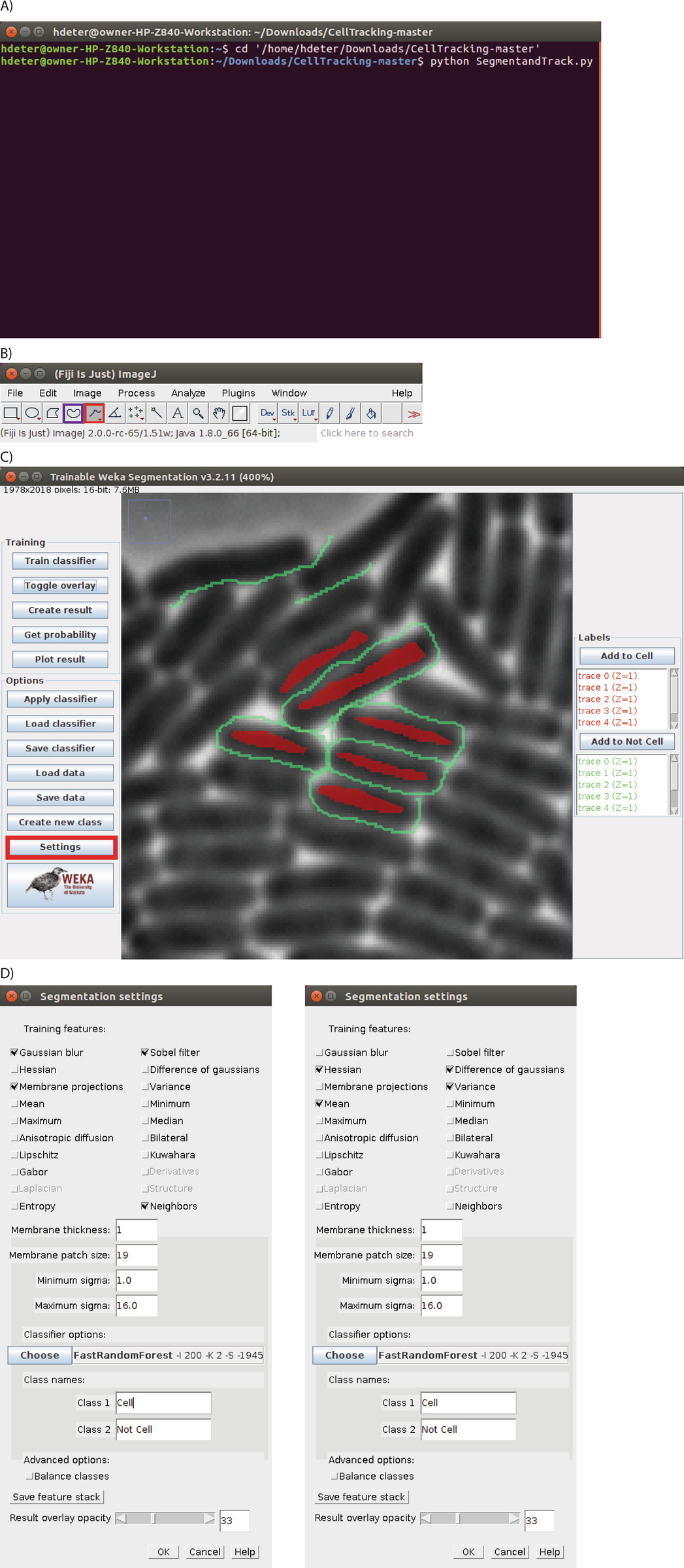 A Cell Segmentation/Tracking Tool Based on Machine Learning