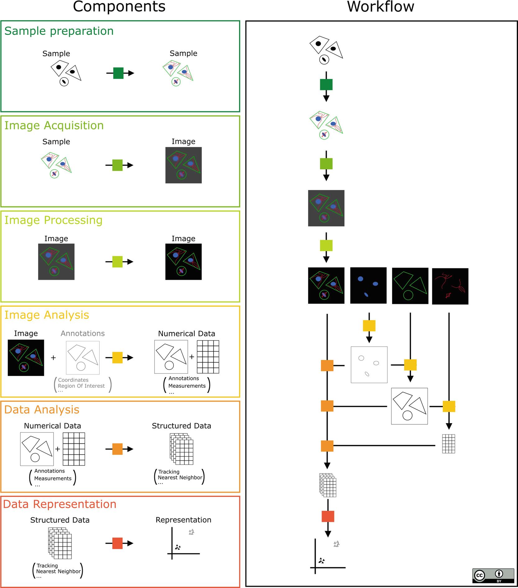 Open Source Tools for Biological Image Analysis | SpringerLink
