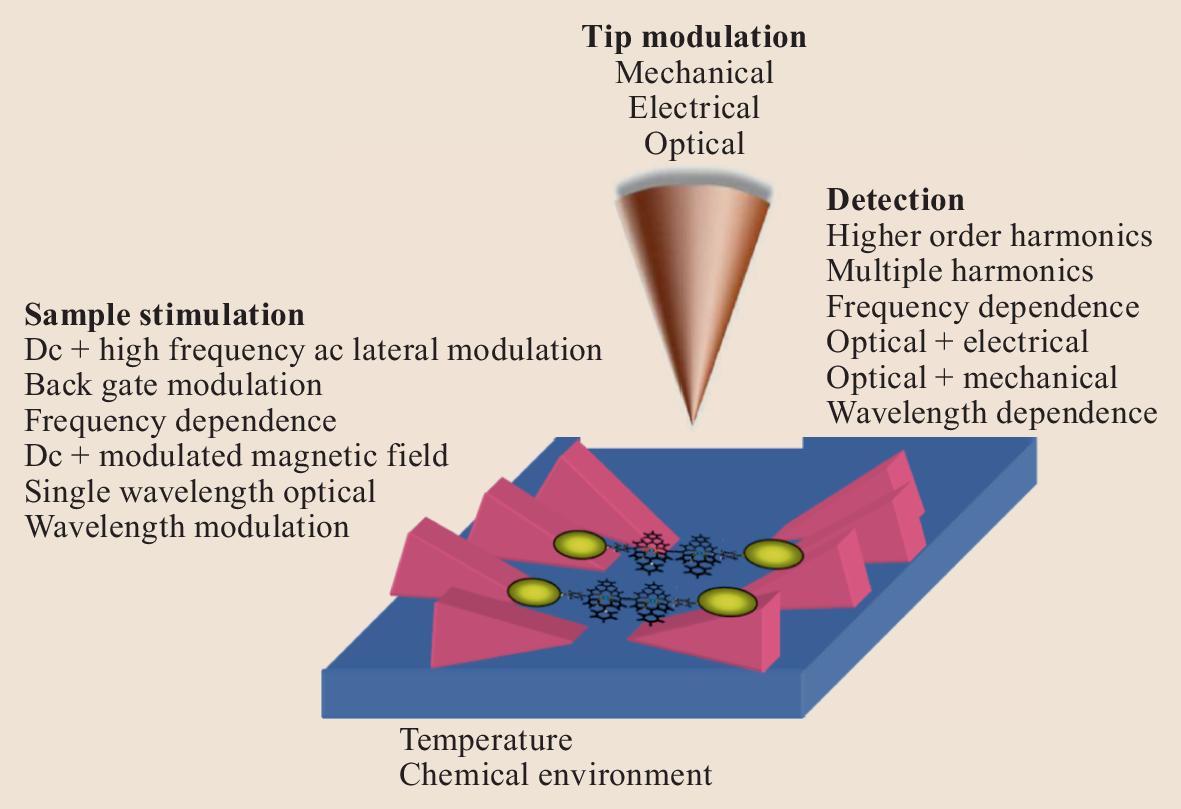 Scanning Probe Microscopy in Materials Science | SpringerLink on