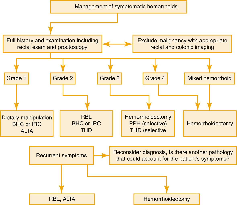 Hemorrhoids | SpringerLink