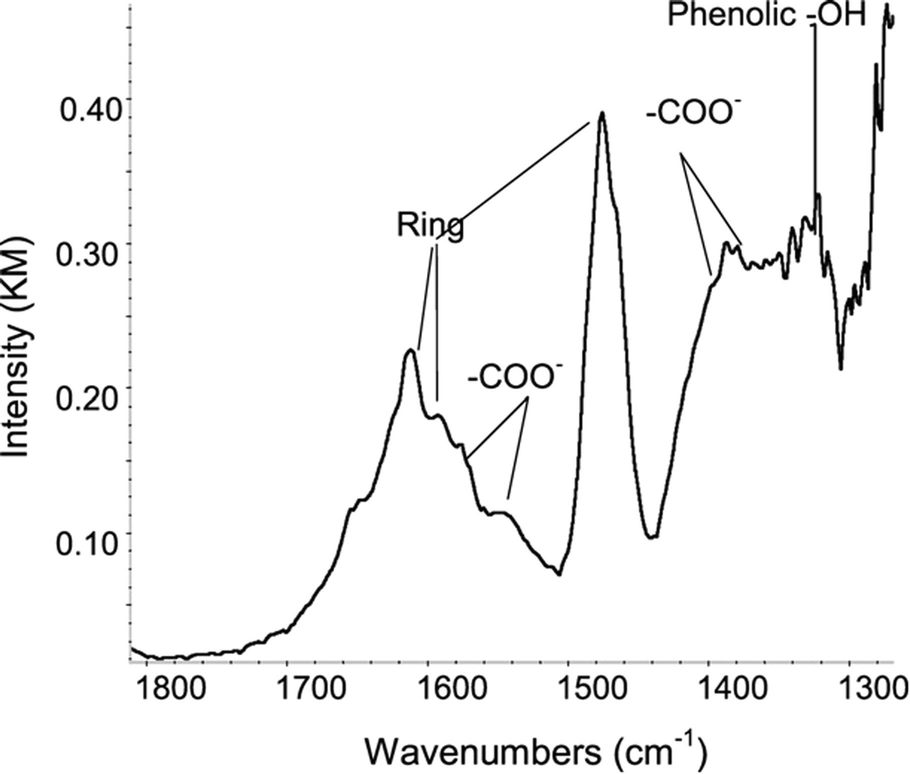 Interactions of the Kaolin Minerals with Complex Organic
