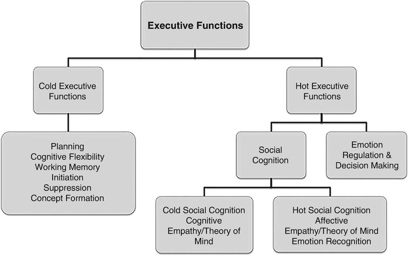 Virtual School Environments for Neuropsychological