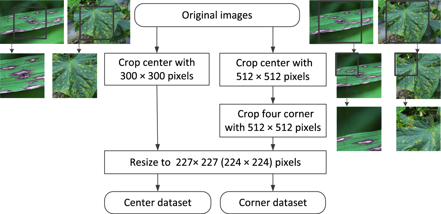 Crop Disease Image Classification Based on Transfer Learning