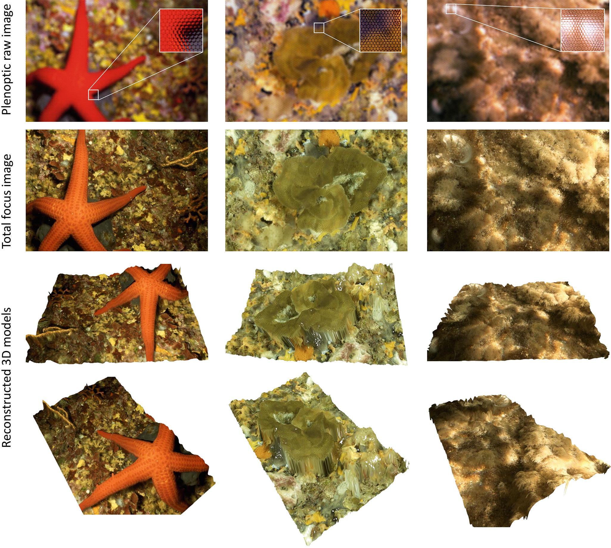 Deepwater Archaeological Survey: An Interdisciplinary and