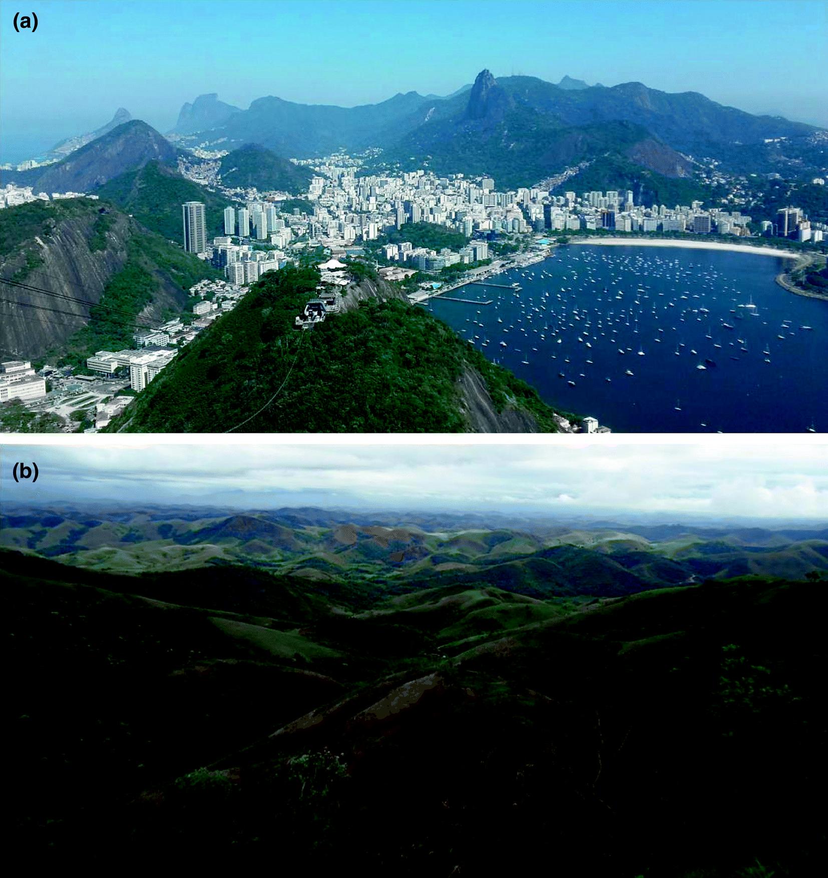 Atlantic Tropical Brazil Springerlink