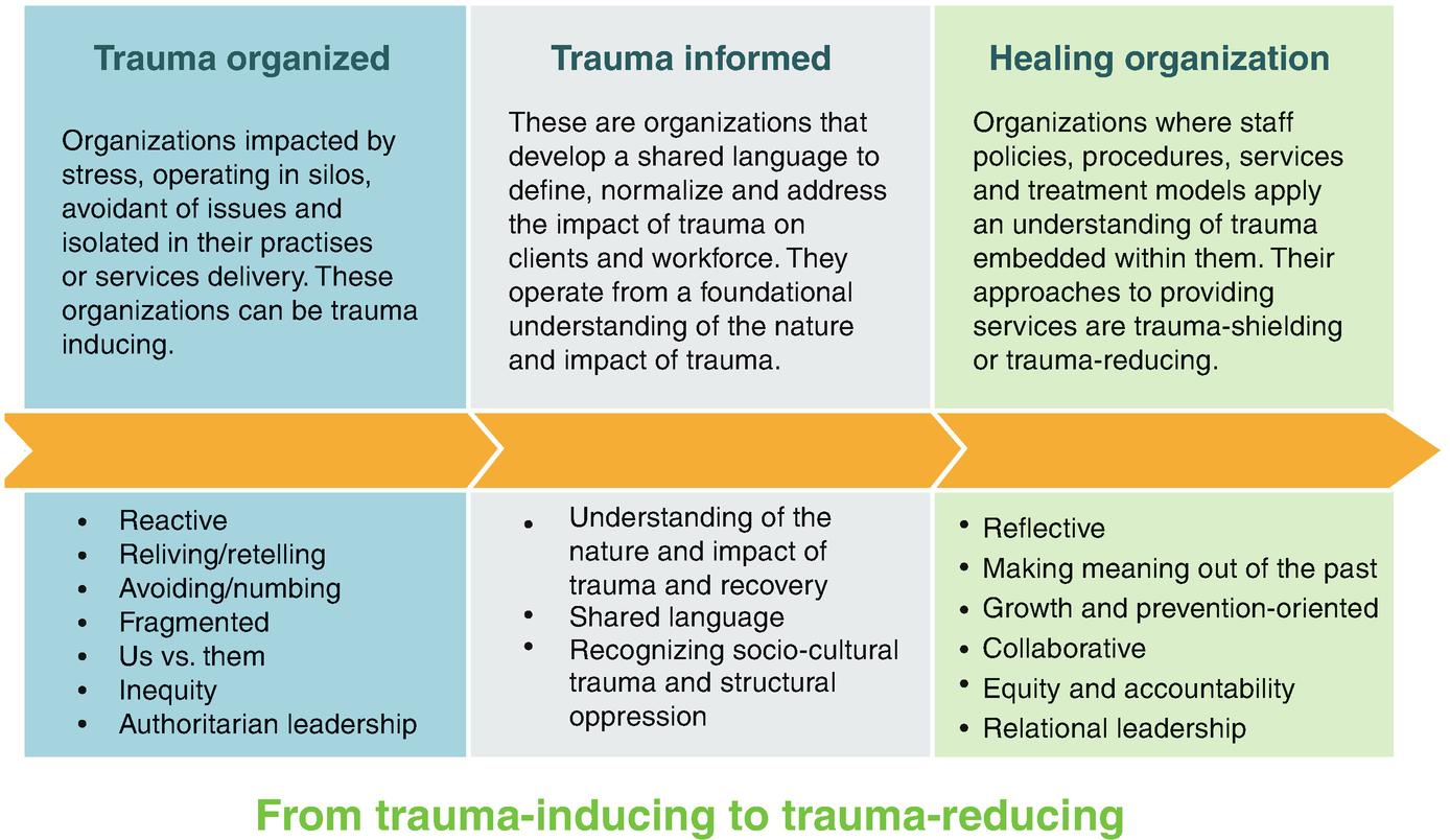 Trauma-Informed Pediatrics: Organizational and Clinical Practices