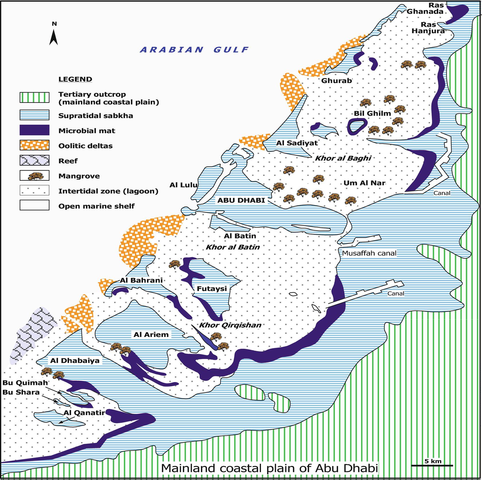 Interpretations of Holocene Carbonate-Evaporites of Coastal