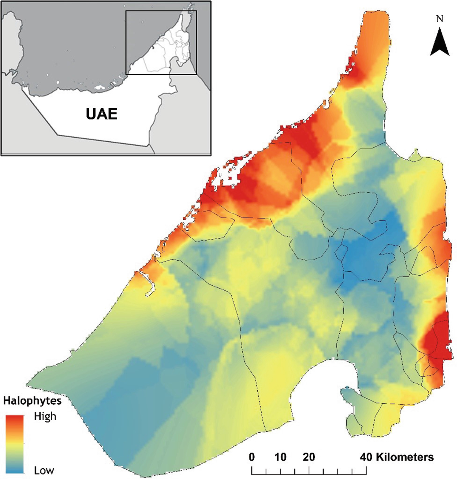 Diversity and Distribution of Salt-Tolerant Plants of the