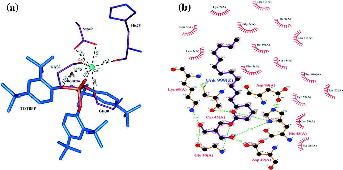 Structure-Based Drug Design with a Special Emphasis on
