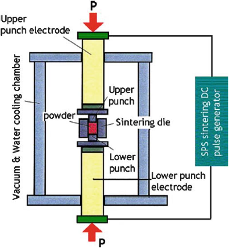 Spark Plasma Sintering of NiTi Shape Memory Alloy | SpringerLink