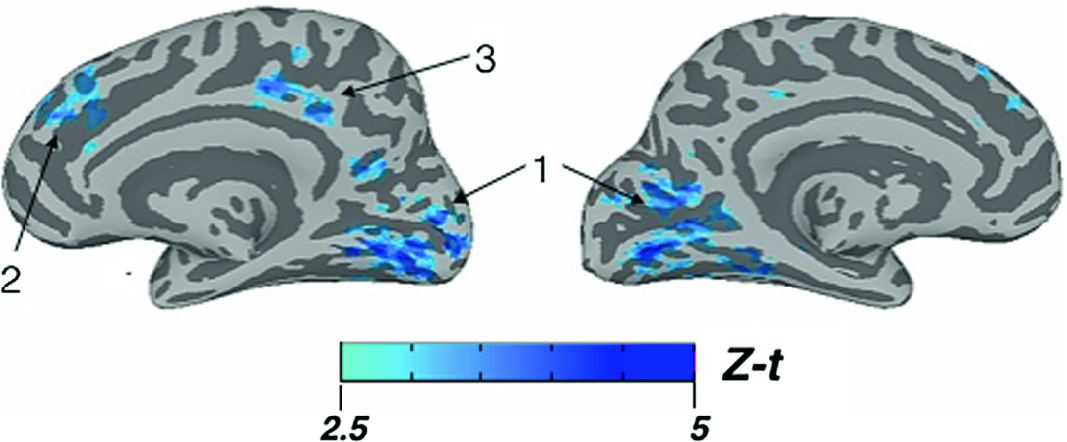 Unsuccessful External Search: Using Neuroimaging to