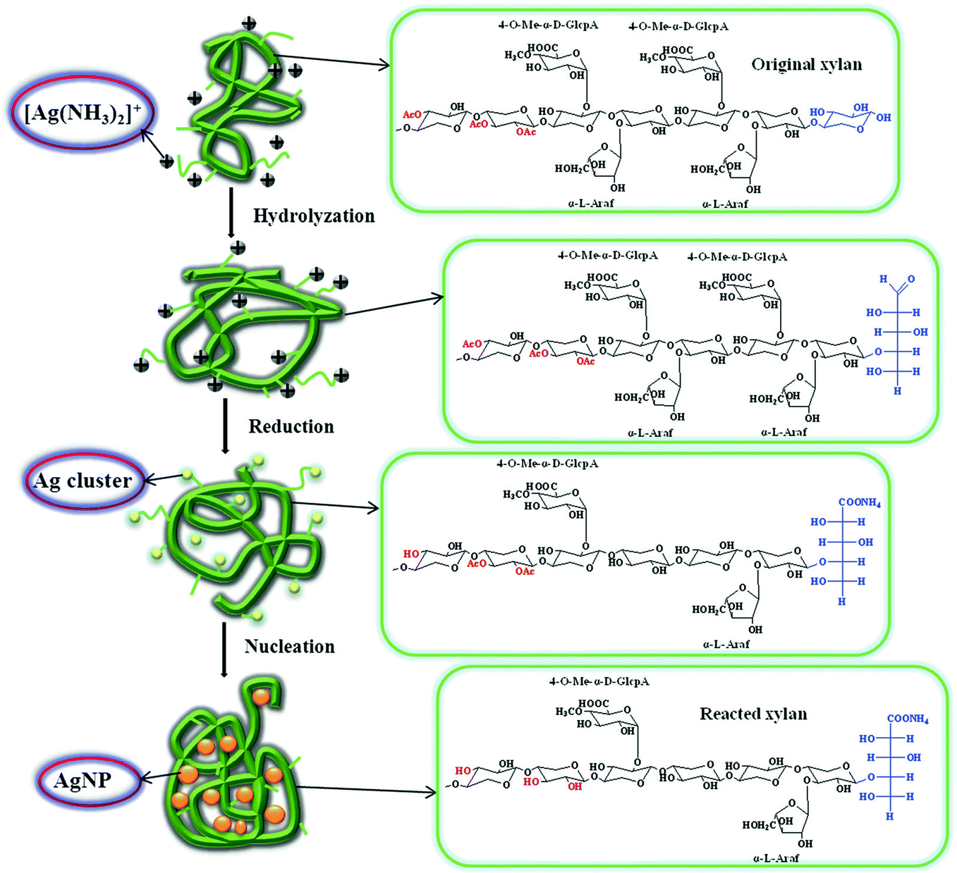 Synthesis, Characterization, and Applications of Hemicelluloses