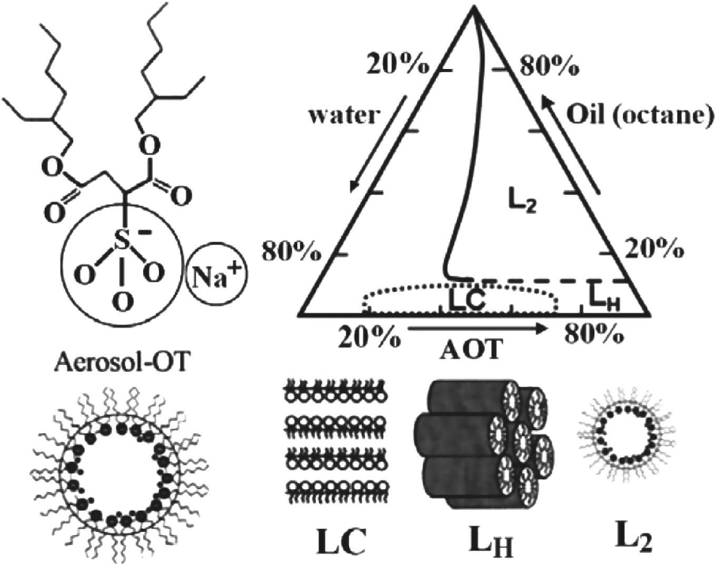 Chemical Oscillations and Spiral Waves | SpringerLink
