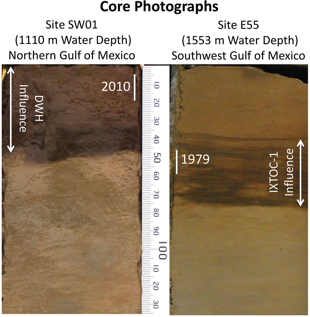 The Sedimentary Record of MOSSFA Events in the Gulf of Mexico: A ...