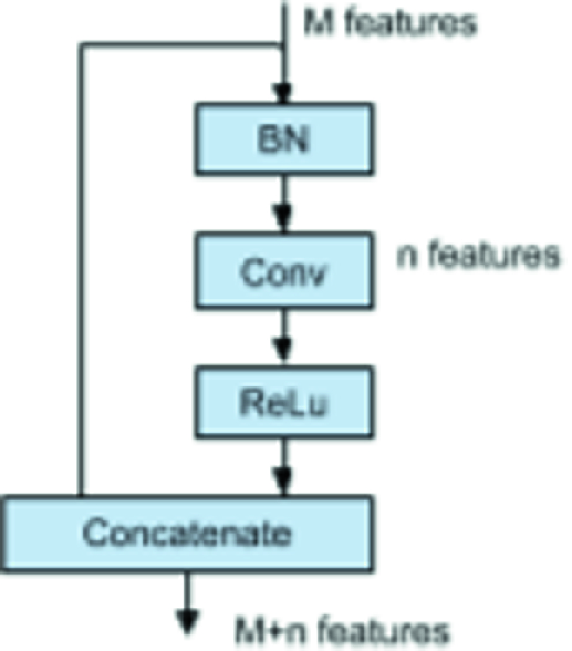 Ensembles of Densely-Connected CNNs with Label-Uncertainty for Brain
