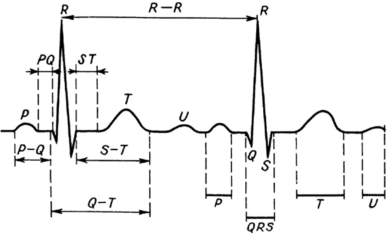 ECG Signal Spectral Analysis Approaches for High-Resolution