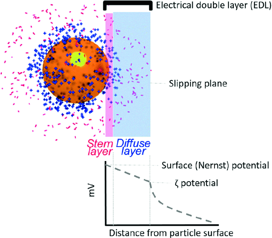 Nanoparticle Behaviour in Complex Media: Methods for Characterizing