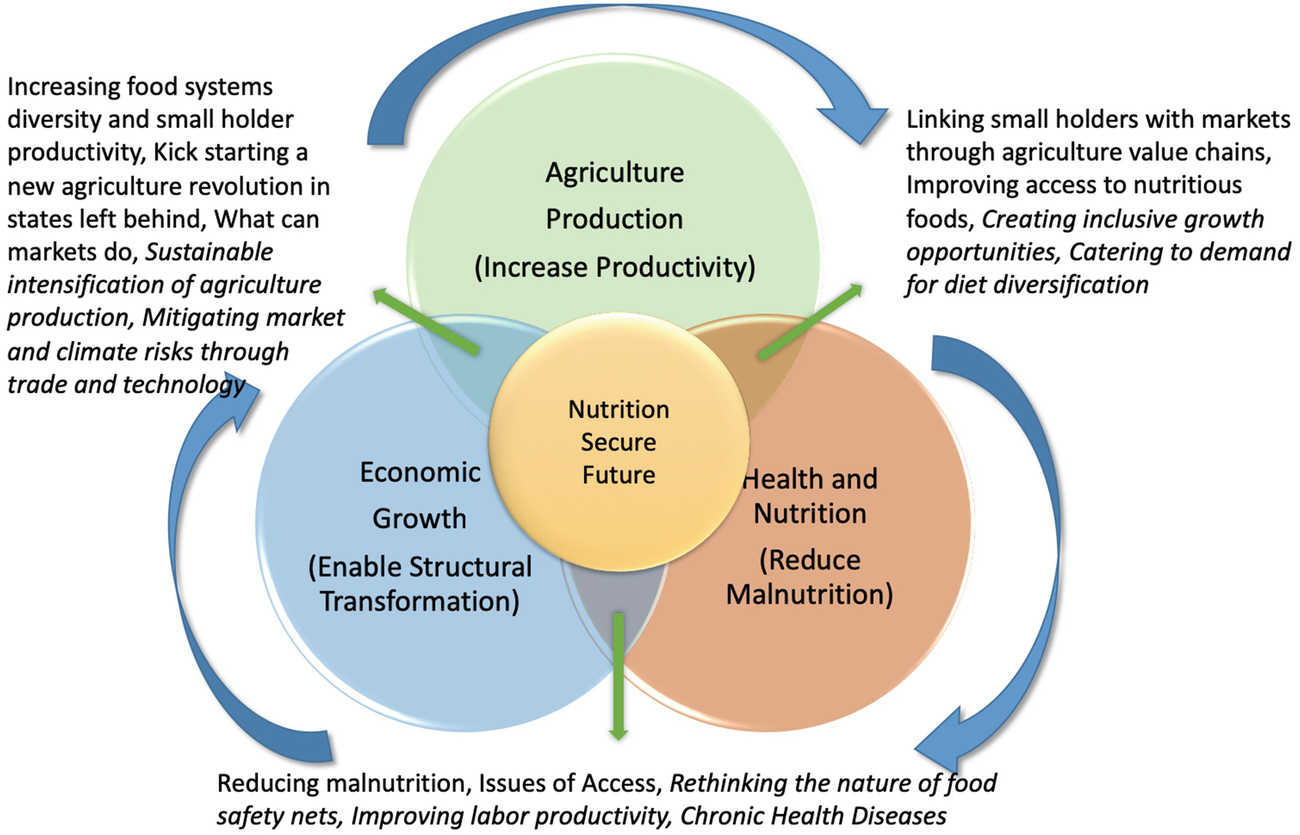 Indian Food Systems towards 20 Challenges and Opportunities ...