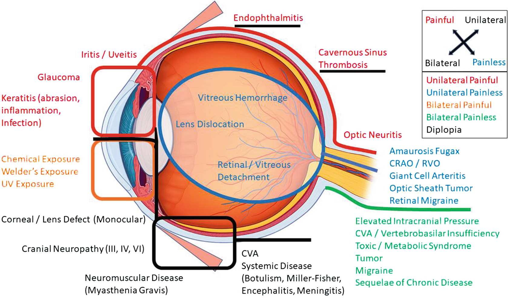 Damage Control Ophthalmology: Emergency Department