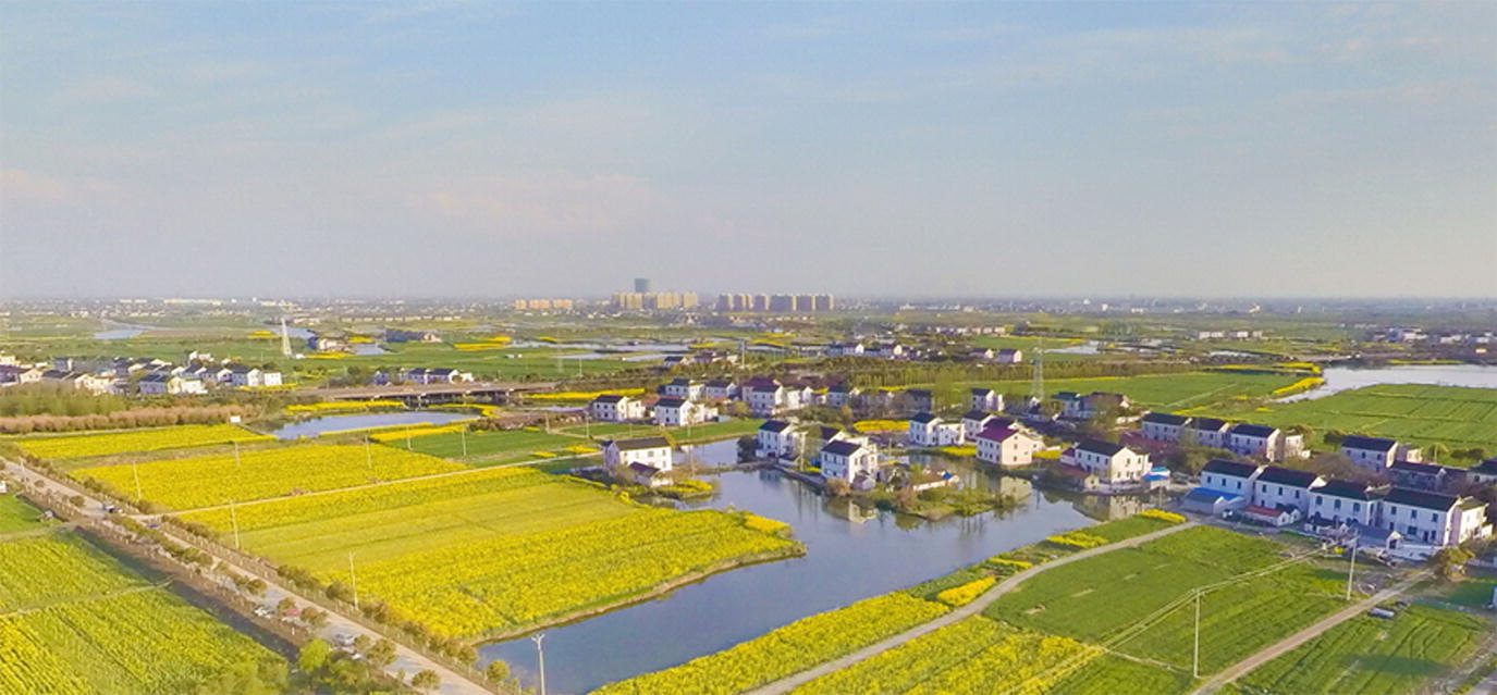 Wetland Restoration in China: Principles, Techniques, and