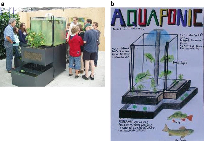 Aquaponics as an Educational Tool   SpringerLink