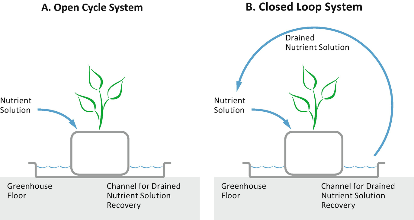 Hydroponic Technologies Springerlink