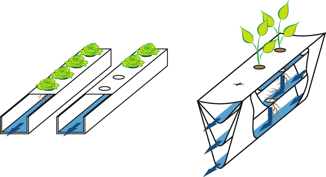 Hydroponic Technologies   SpringerLink