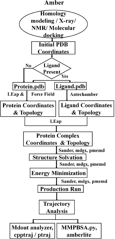 Applications of Molecular Dynamics Simulations in