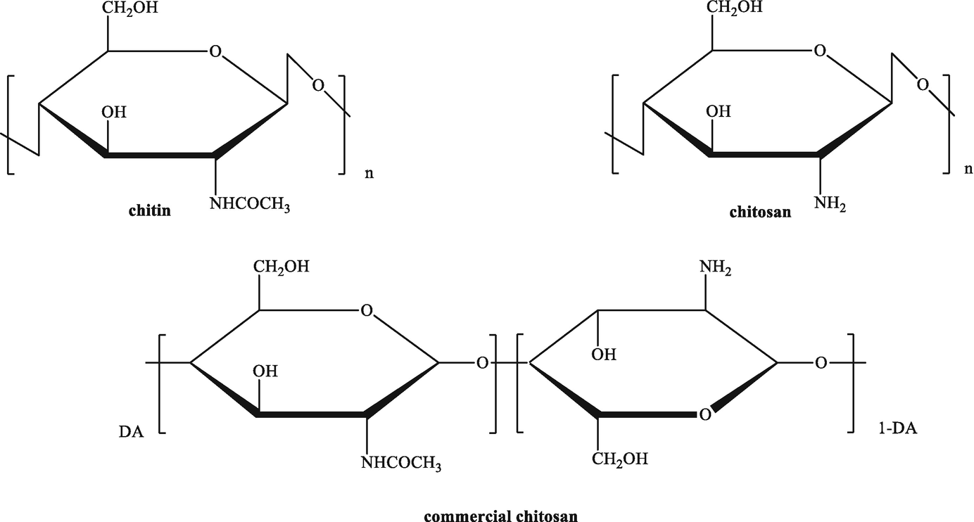 Fundamentals and Applications of Chitosan   SpringerLink