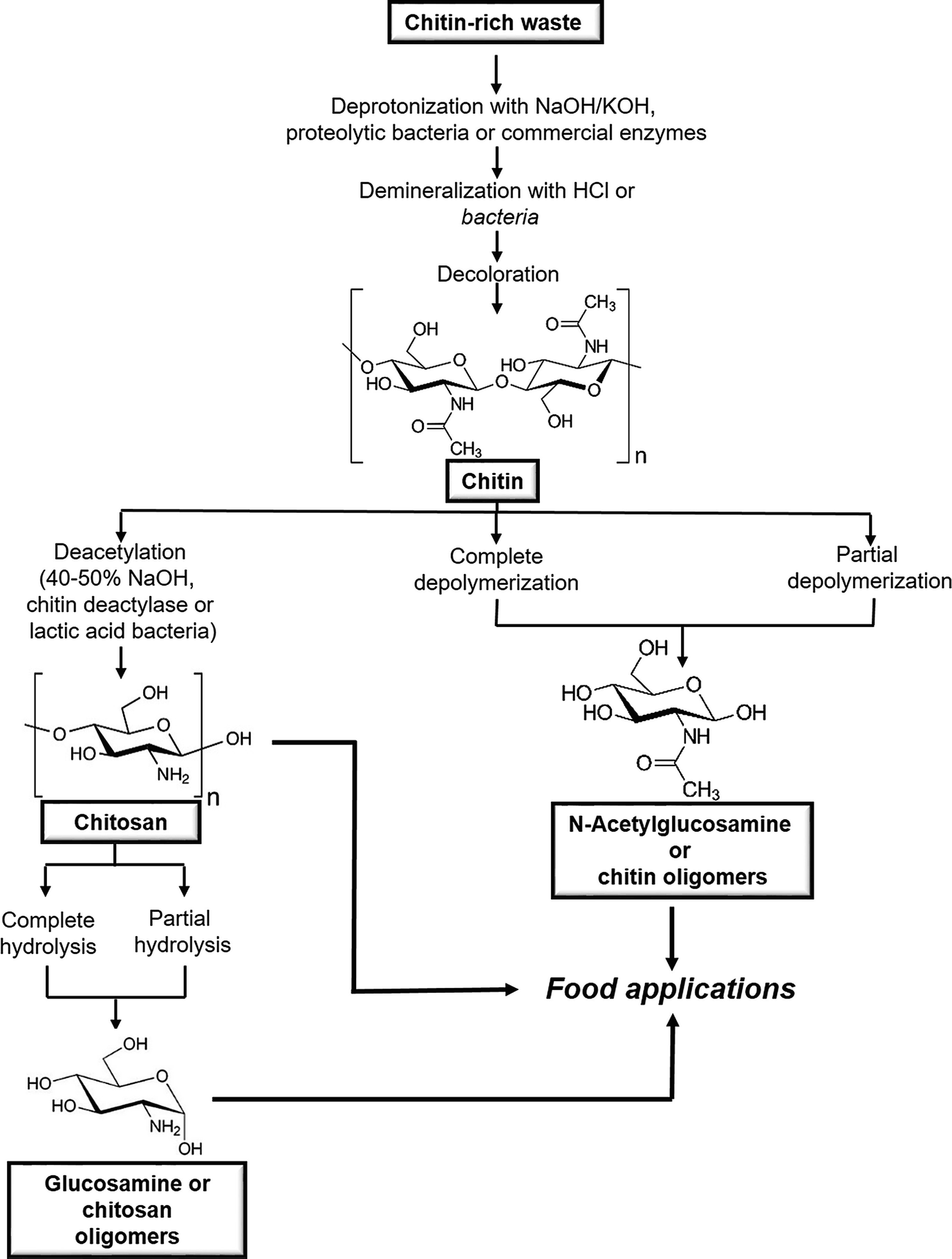 Nutritional and Additive Uses of Chitin and Chitosan in the