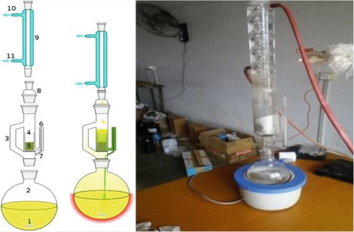 Optimization Of Extraction Of Kusum Seed Oil Through Soxhlet Extraction Process Using N Hexane Solvent Springerlink