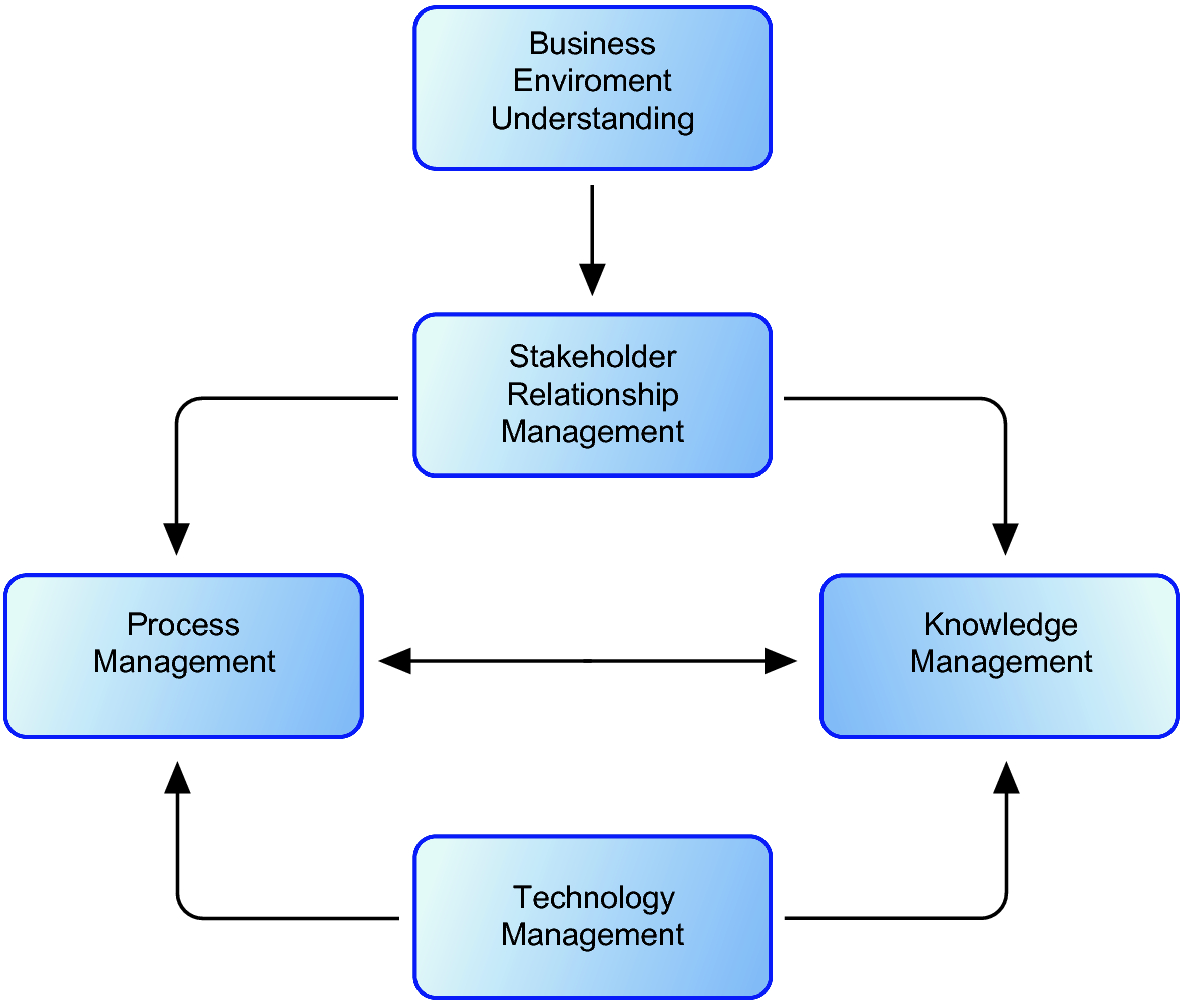 Process Execution in a Knowledge Management Environment
