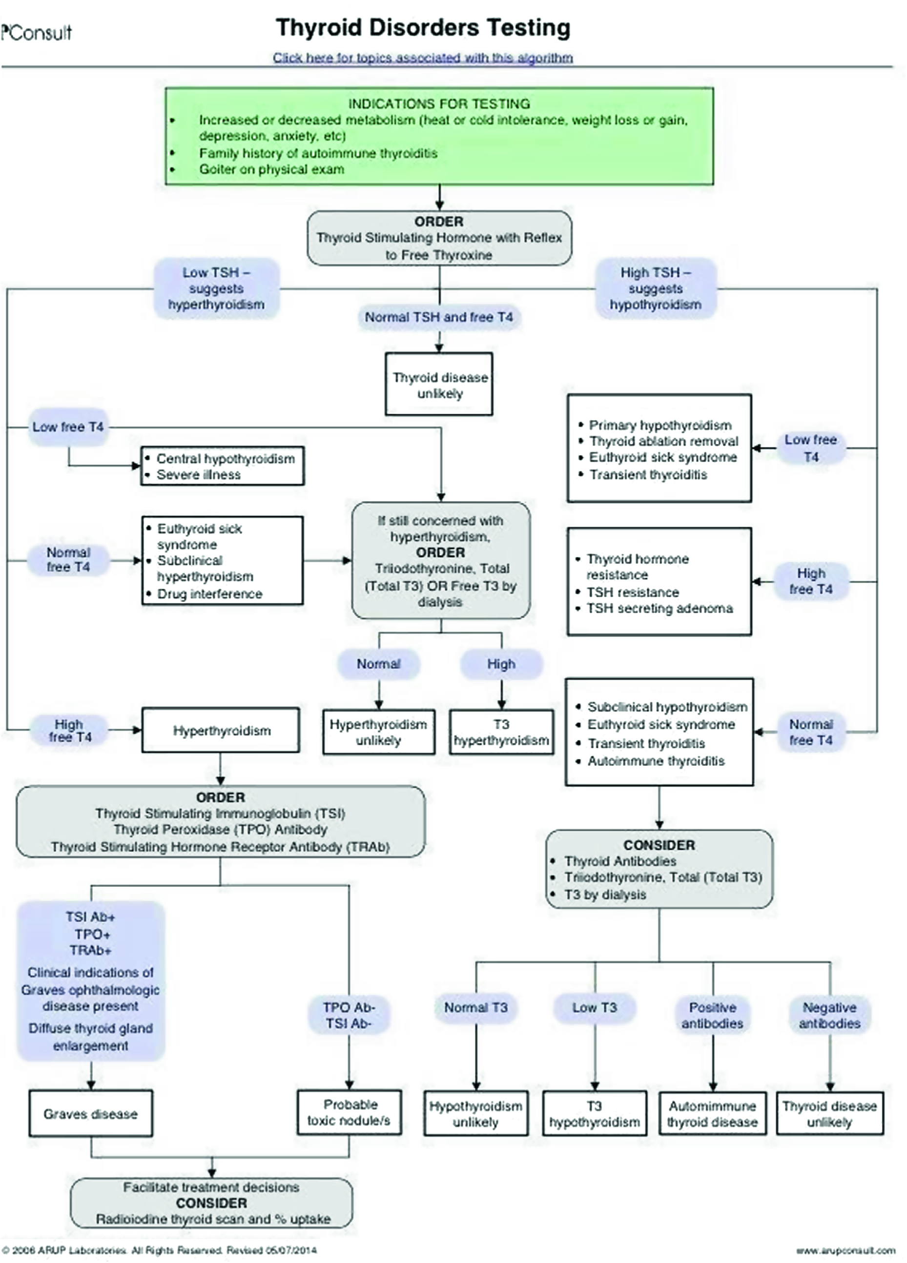 Development of a Diagnostic Support Software in the