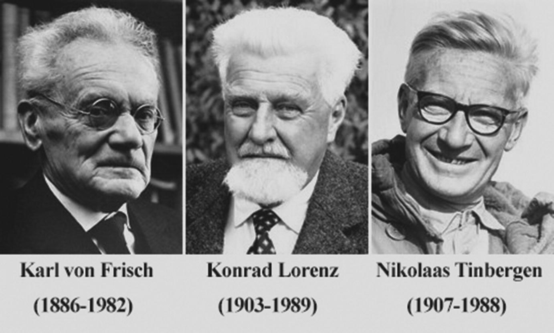 Εthology, Evolutionary Psychology, Sociobiology, and Evolutionary