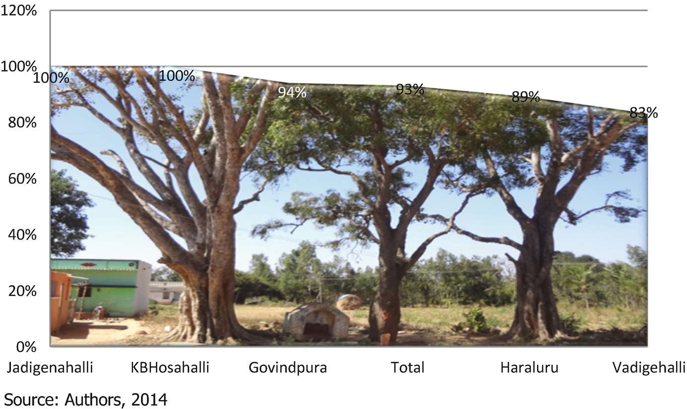 Cultural Influences on Health, Traditions and Ecology | SpringerLink