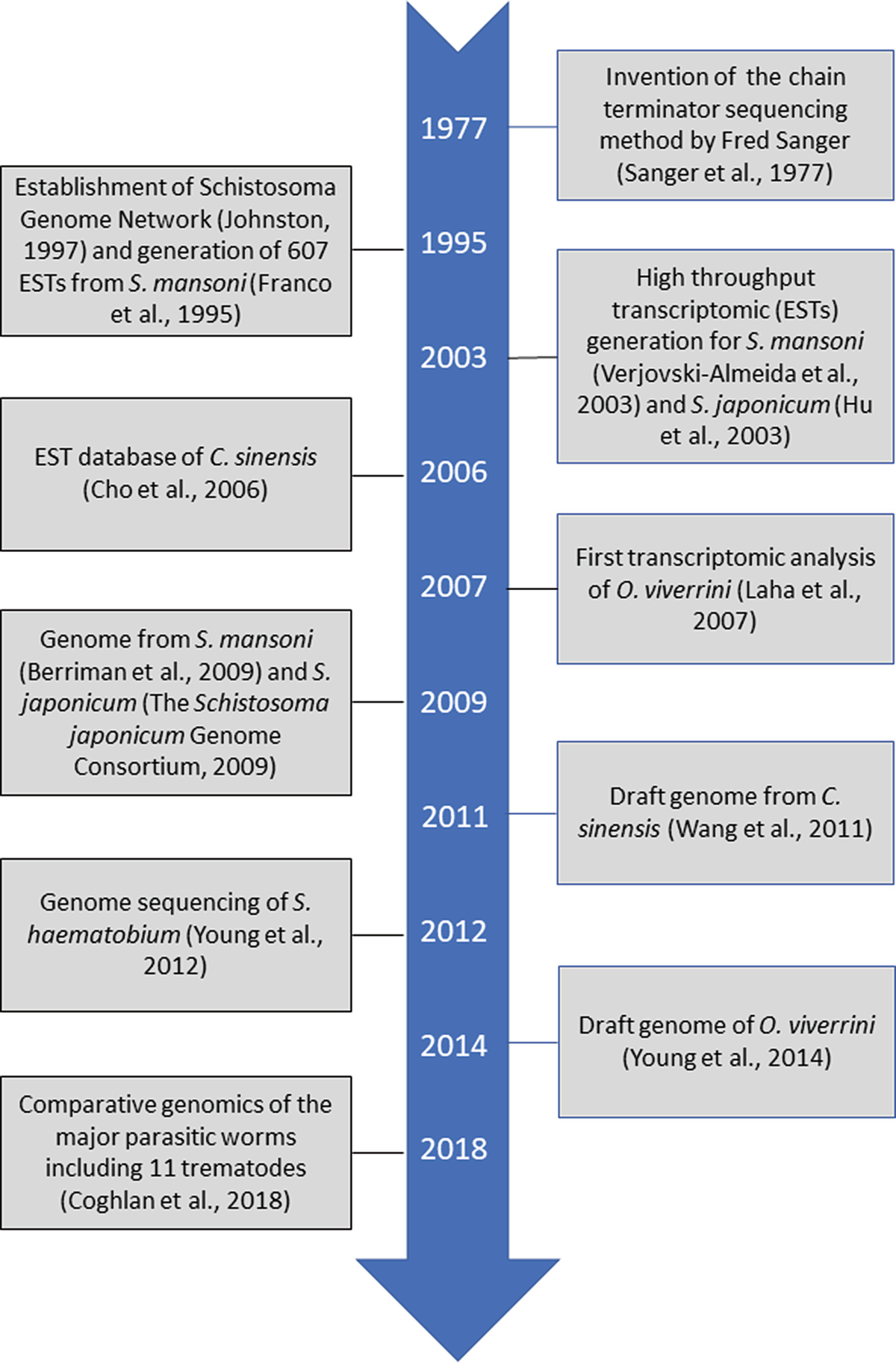Trematode Genomics and Proteomics | SpringerLink