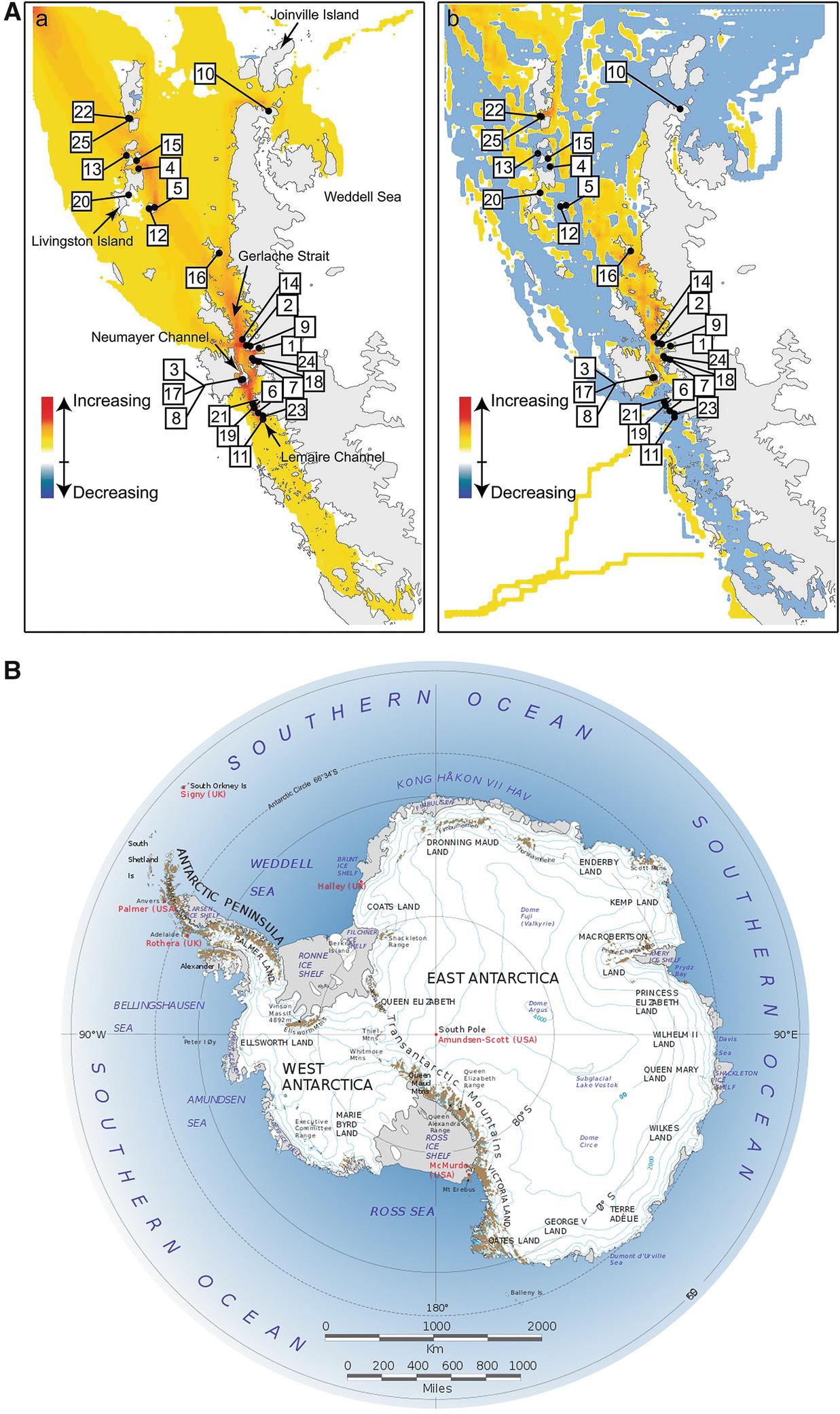 Adventure Tourism In Antarctica Springerlink