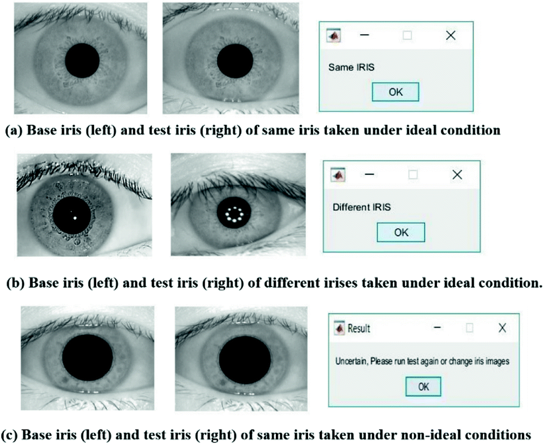 Iris Identification in 3D | SpringerLink