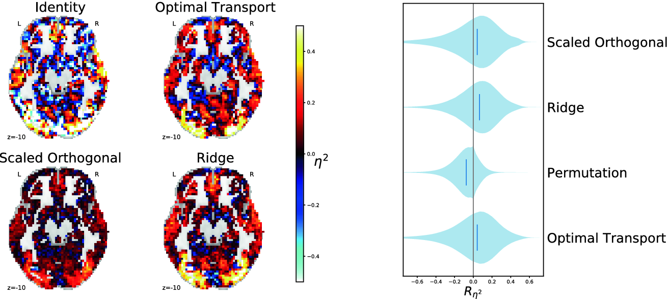 Local Optimal Transport for Functional Brain Template