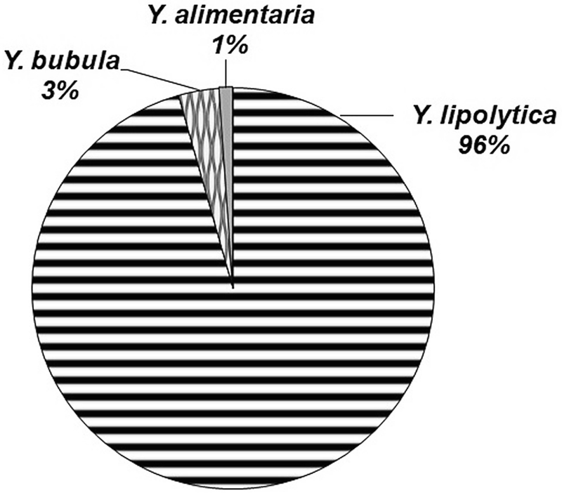 Systematics, Diversity and Ecology of the Genus Yarrowia and
