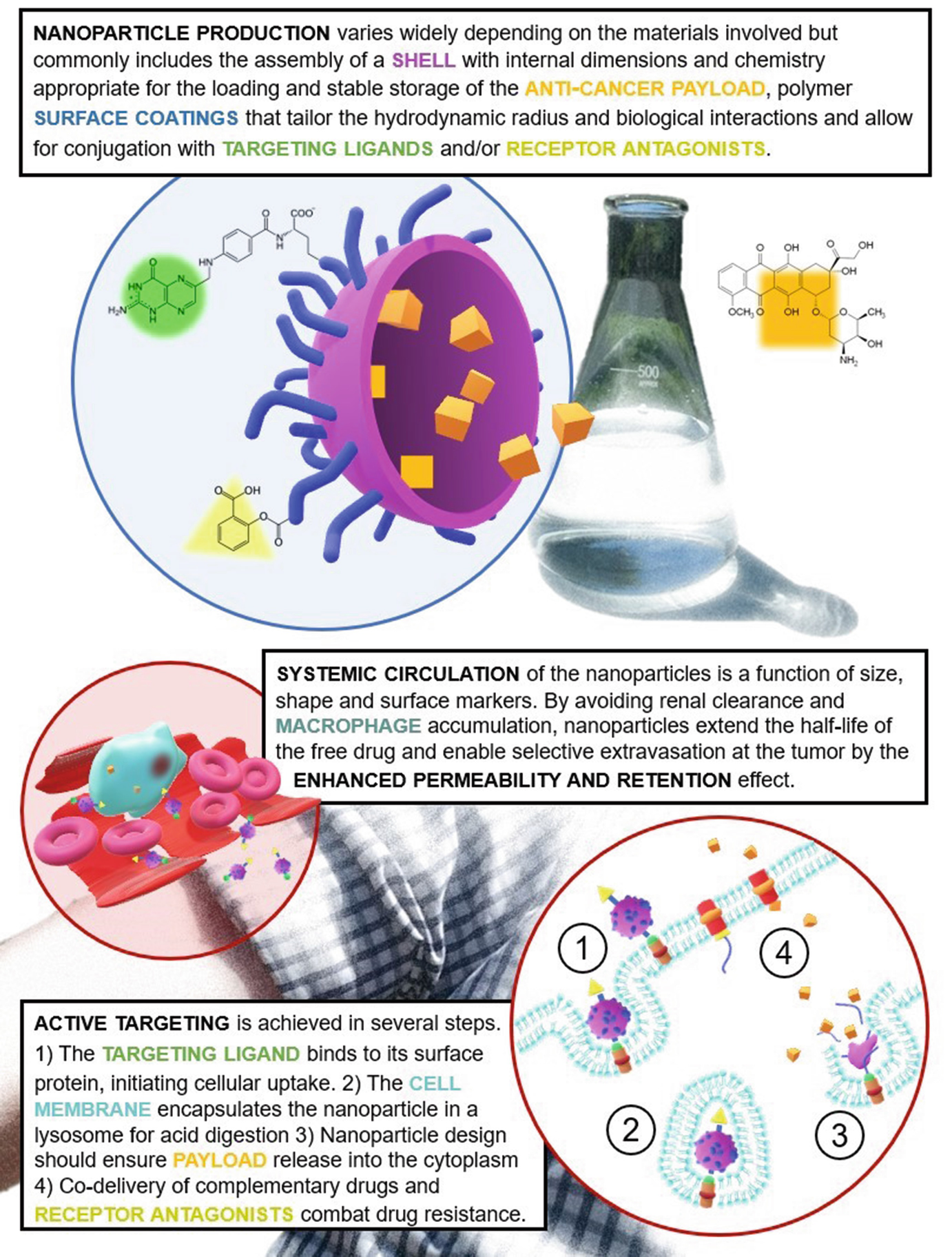 Nanomedicine and Drug Delivery Systems in Overcoming
