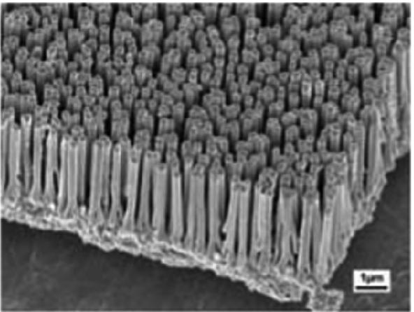 Environmental Impact of Nanotechnology and Novel Applications of