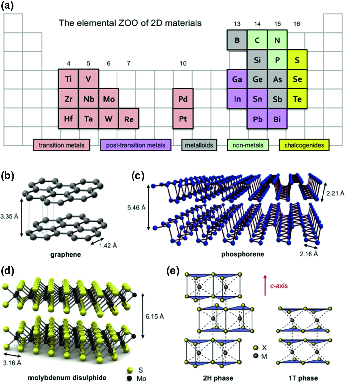 Carbon Nanomaterials and Two Dimensional Transition Metal